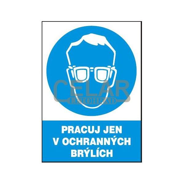Pracuj jen v ochranných brýlích 210x297 mm - plast
